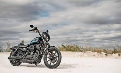 presentación de la Harley-Davidson Sportster Iron 1200