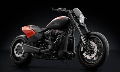 Harley Davidson FXDR 114 Rizoma