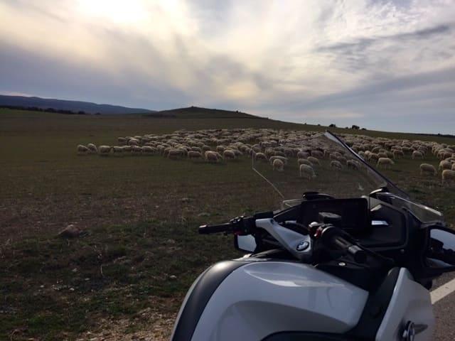 Vuelta-España-BMW-2021-Primer-dia (10)